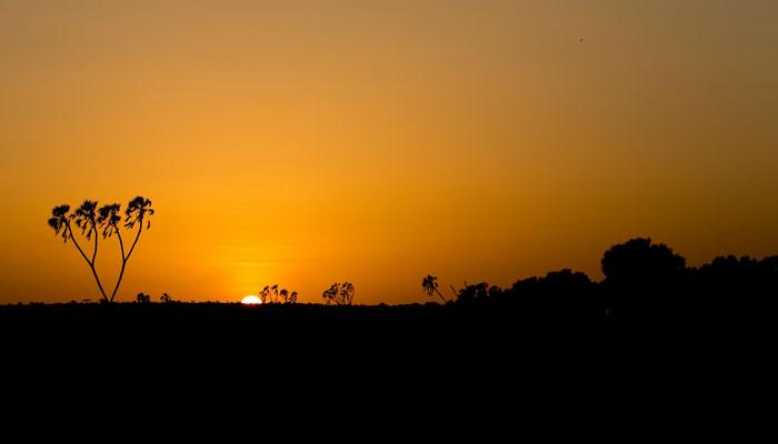 golden-hour-sunset