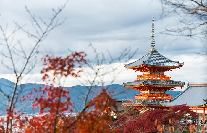 Female solo travel: Japan