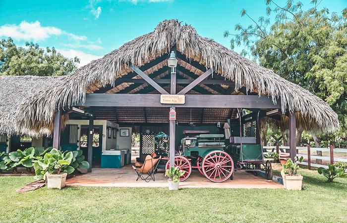 Saddle up at the equestrian center at Casa de Campo.